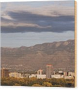 Albuquerque Skyline With The Sandia Mountains In The Background Wood Print by Jeremy Woodhouse