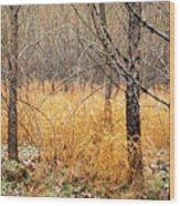 Alder Grove Wood Print