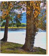 Alder Lake In The Fall Wood Print