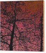 Alder Trees Against The Winter Sunrise Wood Print