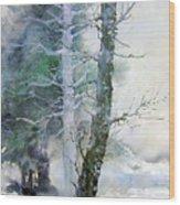 Alders And Cedar Wood Print