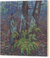 Alders With Ferns Wood Print