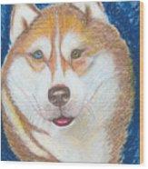 Alek The Siberian Husky Wood Print