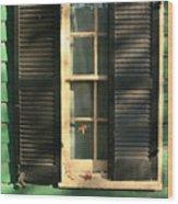 Alexandria Window Wood Print