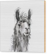 Alfonso Wood Print