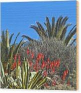 Algarve Plants Wood Print