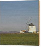 Algarve Windmill Wood Print by Heiko Koehrer-Wagner