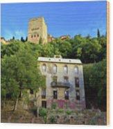 Alhambra Environs Wood Print