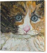 Ali Cat 1 Wood Print