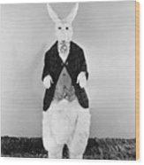 Alice In Wonderland, 1933 Wood Print
