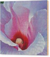 Alicja's Garden Wood Print