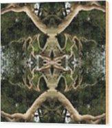 Alien Birth Wood Print