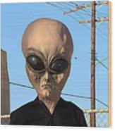 Alien Face At 6th Street Bridge Wood Print