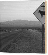 Alien Highway Wood Print by David Lee Thompson