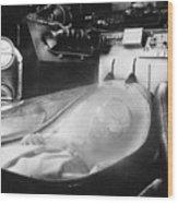 Alien Photograph Wood Print