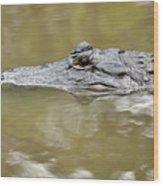 Alligator Stealth Wood Print