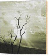 Alive Wood Print