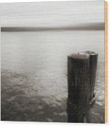 Alki Piling 2 Wood Print