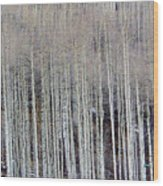 All Aspen Wood Print