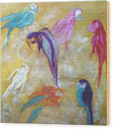 All Dressed Up - Parrots Wood Print