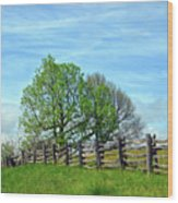 All Fenced In Along The Blue Ridge Parkway Wood Print