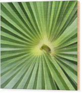 All Green Wood Print