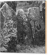 All In A Row At Fuerty Cemetery Roscommon Ireland Wood Print