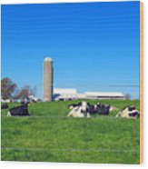 All Is Well In The Farmland Wood Print
