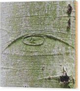 All-seeing Eye Of God On A Tree Bark Wood Print