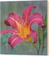 All Summer Lily Wood Print