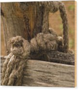 All Tied Up Wood Print