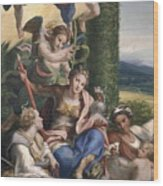 Allegory Of The Virtues Wood Print