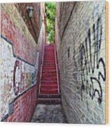 Alley At Chapelhill Wood Print