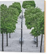 Alley Of Perfectionists Wood Print