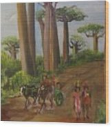 Alley Of The Baobabs Wood Print