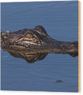 Alligator 17 Wood Print