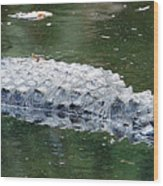 Alligator Crawl Wood Print