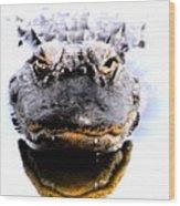 Alligator Fangs 2 Wood Print