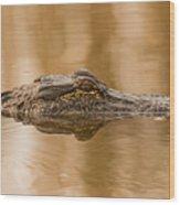 Alligator Head Wood Print