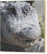 Alligator Smile Wood Print