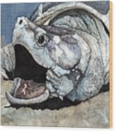Alligator Snapping Turtle Wood Print