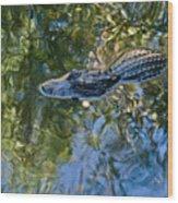 Alligator Stalking Wood Print