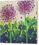 Allium Explosion Wood Print