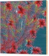 Almog-corall Tree Wood Print