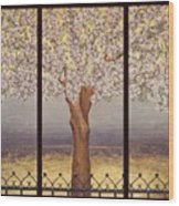 Almond Tree Wood Print