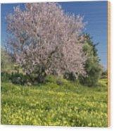 Almond Tree In Meadow Wood Print