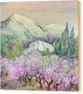 Almond Trees In Altea La Vieja Wood Print