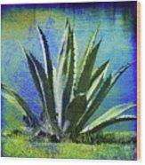 Aloa Blue Wood Print