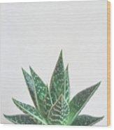 Aloe Tiki Wood Print