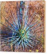Aloe Vera In Meadow Wood Print